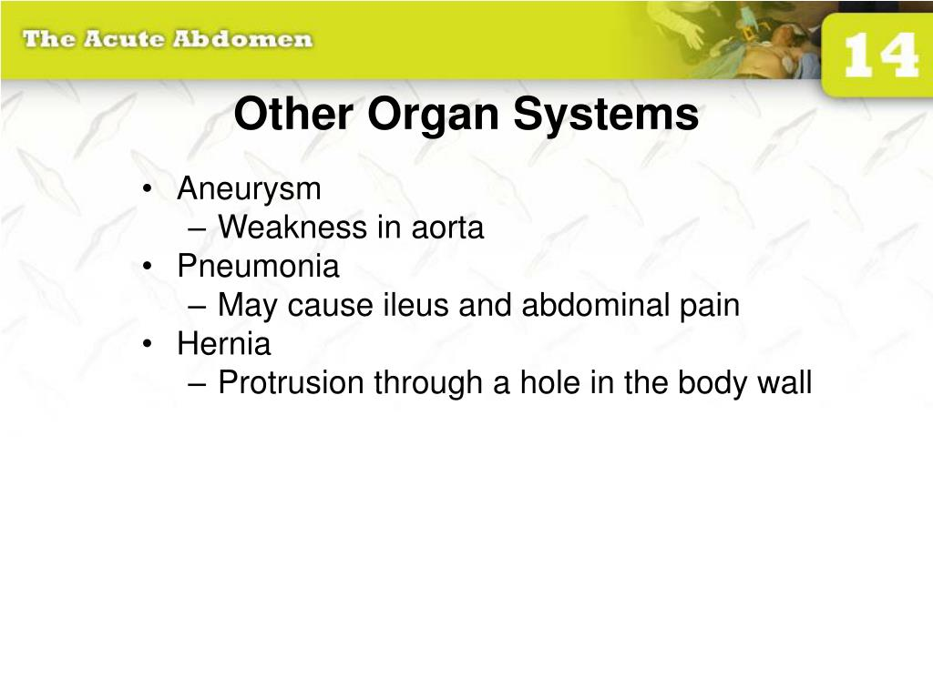 Other Organ Systems