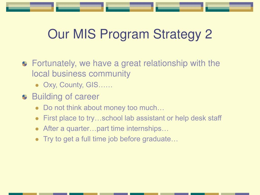 Our MIS Program Strategy 2