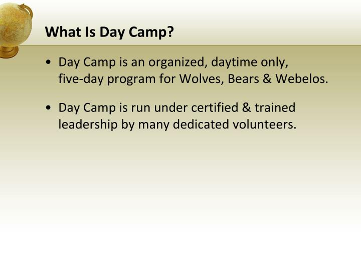 What is day camp
