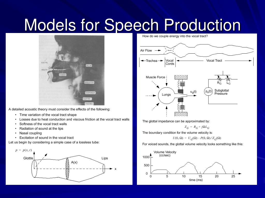 Models for Speech Production
