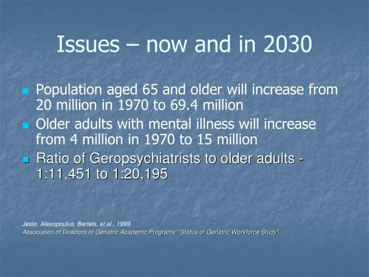 Issues now and in 2030