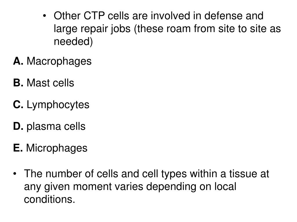 Other CTP cells are involved in defense and large repair jobs (these roam from site to site as needed)