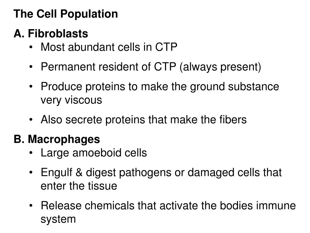 The Cell Population