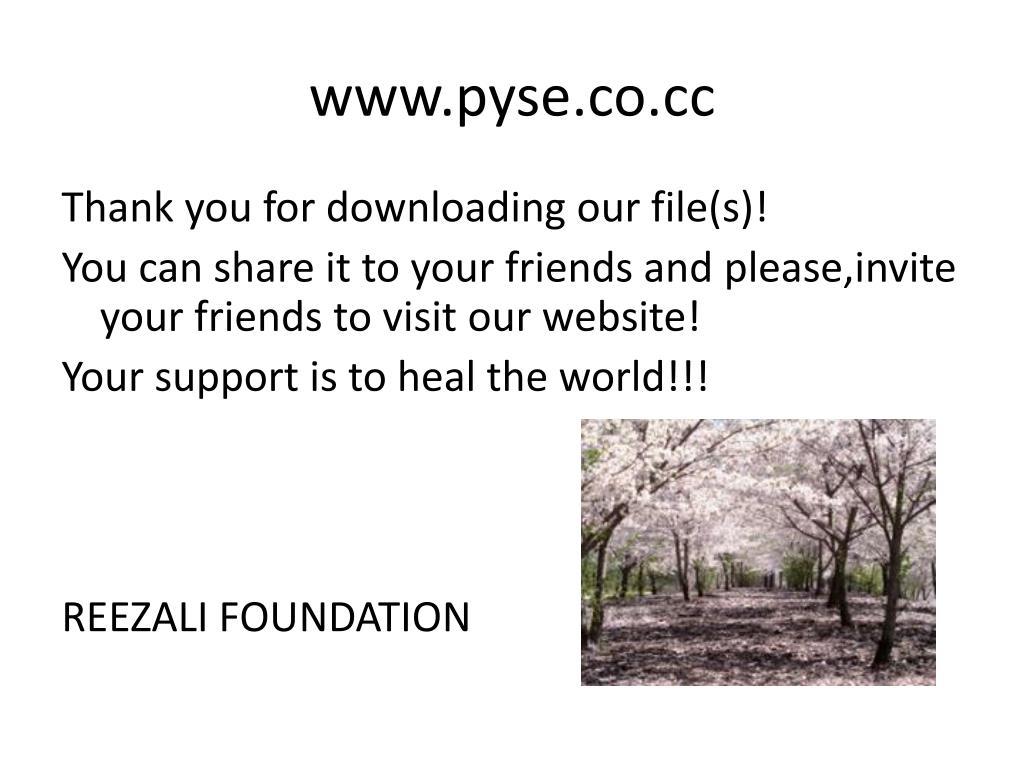 www.pyse.co.cc
