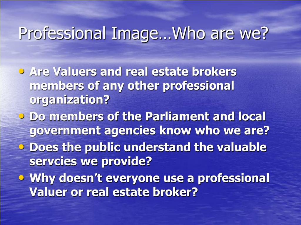 Professional Image…Who are we?