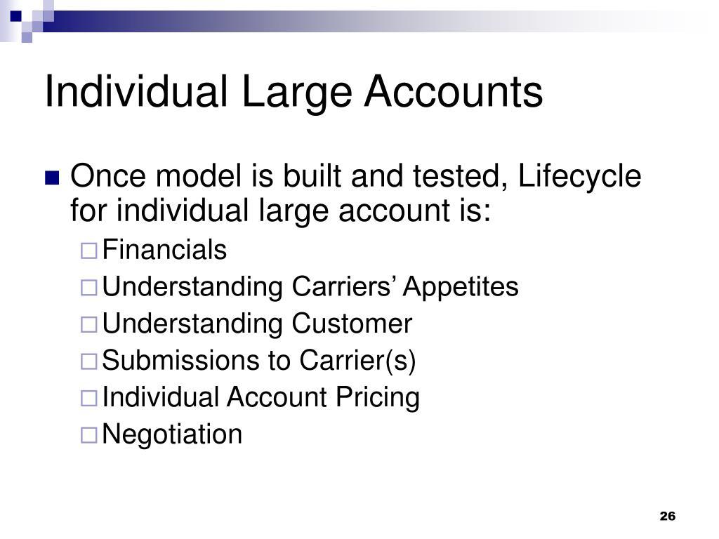 Individual Large Accounts