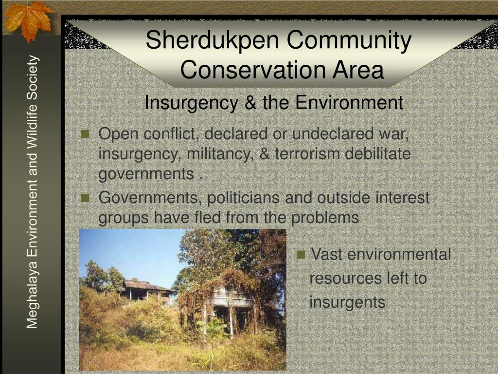 Insurgency & the Environment