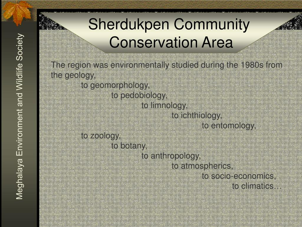 The region was environmentally studied during the 1980s from the geology,