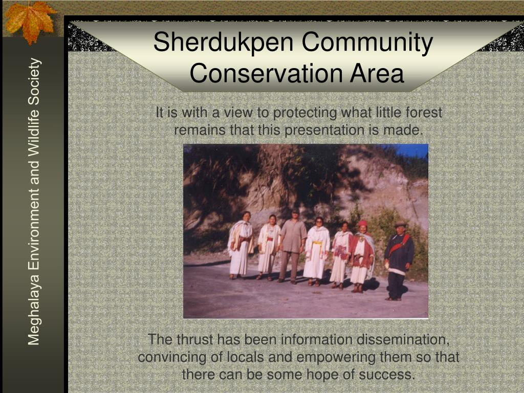 It is with a view to protecting what little forest remains that this presentation is made.