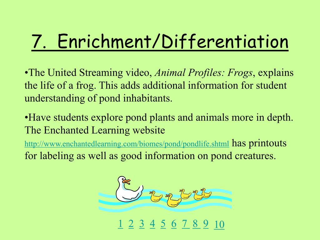 7.  Enrichment/Differentiation