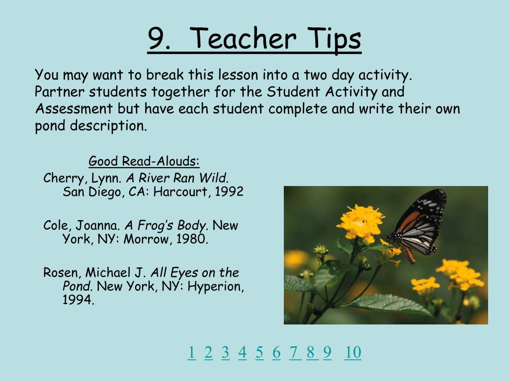 9.  Teacher Tips