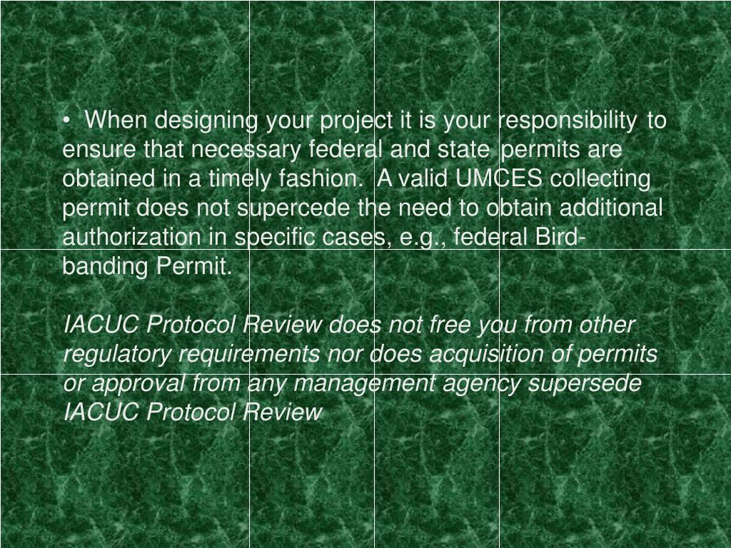 When designing your project it is your responsibility 	to ensure that necessary federal and state 	permits are obtained in a timely fashion.  A valid UMCES collecting permit does not supercede the need to obtain additional authorization in specific cases, e.g., federal Bird-banding Permit.