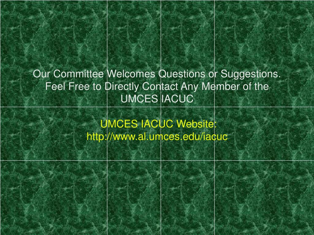 Our Committee Welcomes Questions or Suggestions. Feel Free to Directly Contact Any Member of the UMCES IACUC
