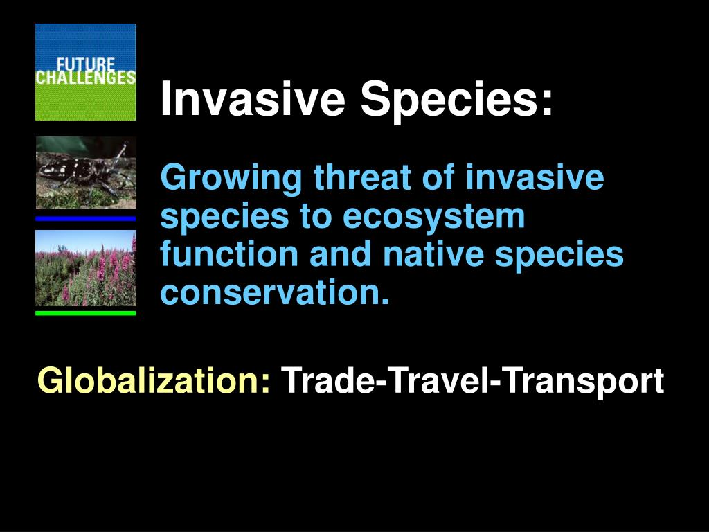 Invasive Species: