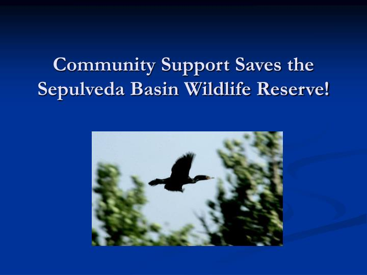 Community support saves the sepulveda basin wildlife reserve