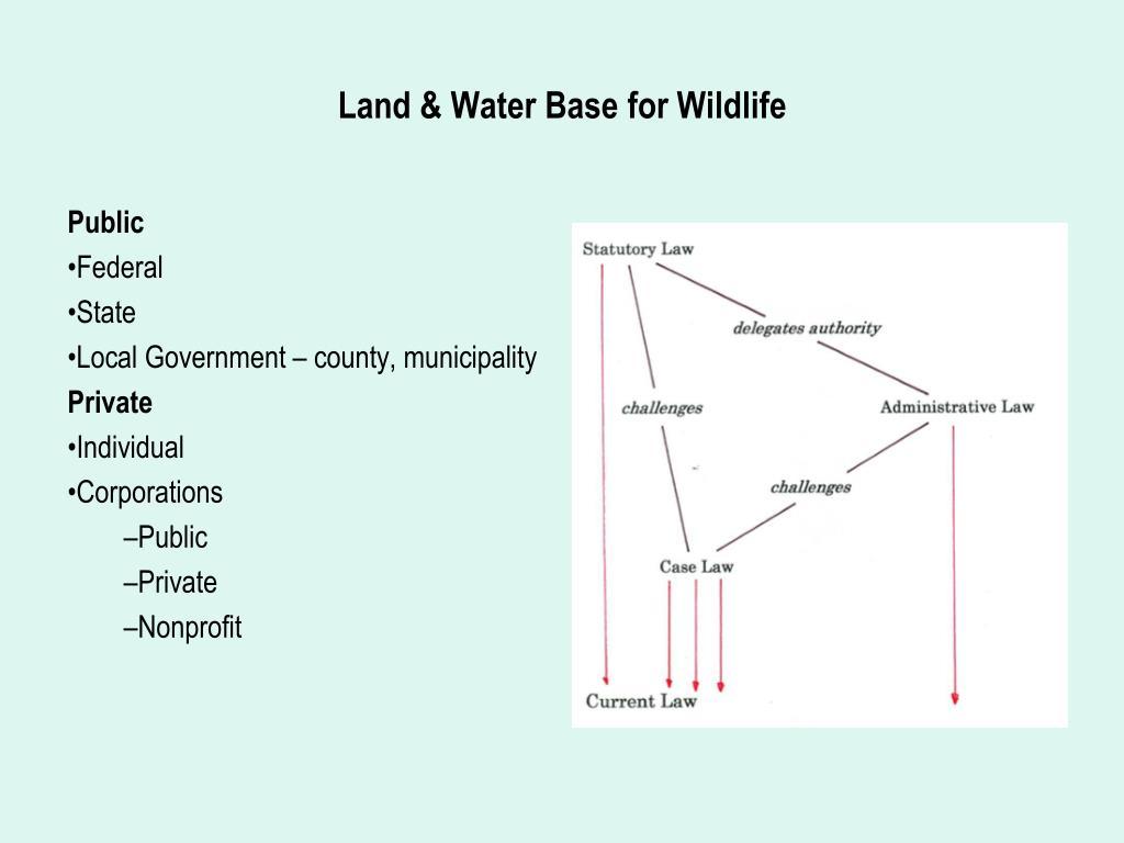 Land & Water Base for Wildlife