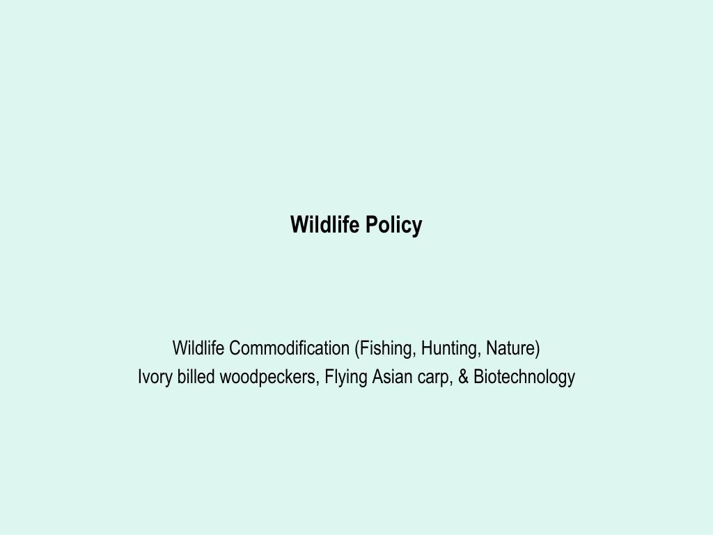 Wildlife Policy