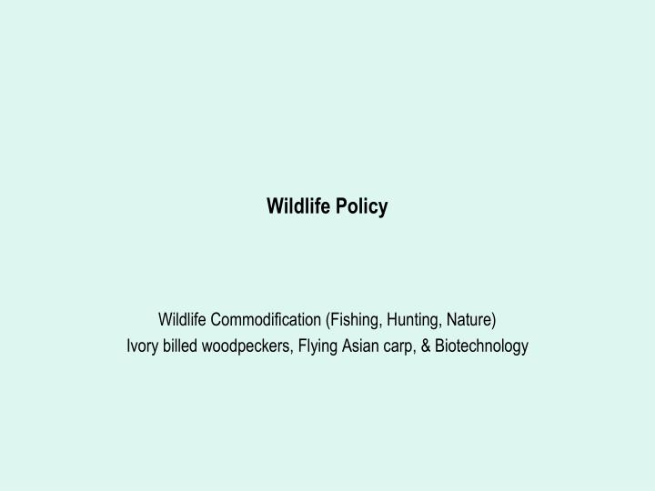 Wildlife policy l.jpg