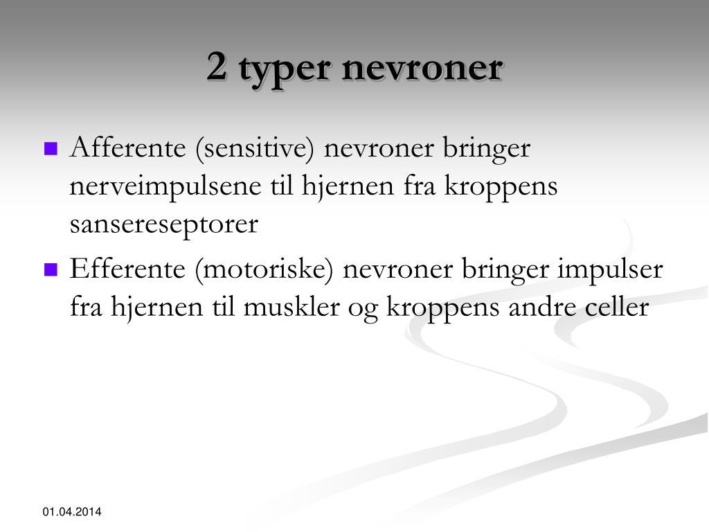 2 typer nevroner