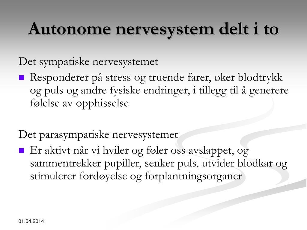 Autonome nervesystem delt i to