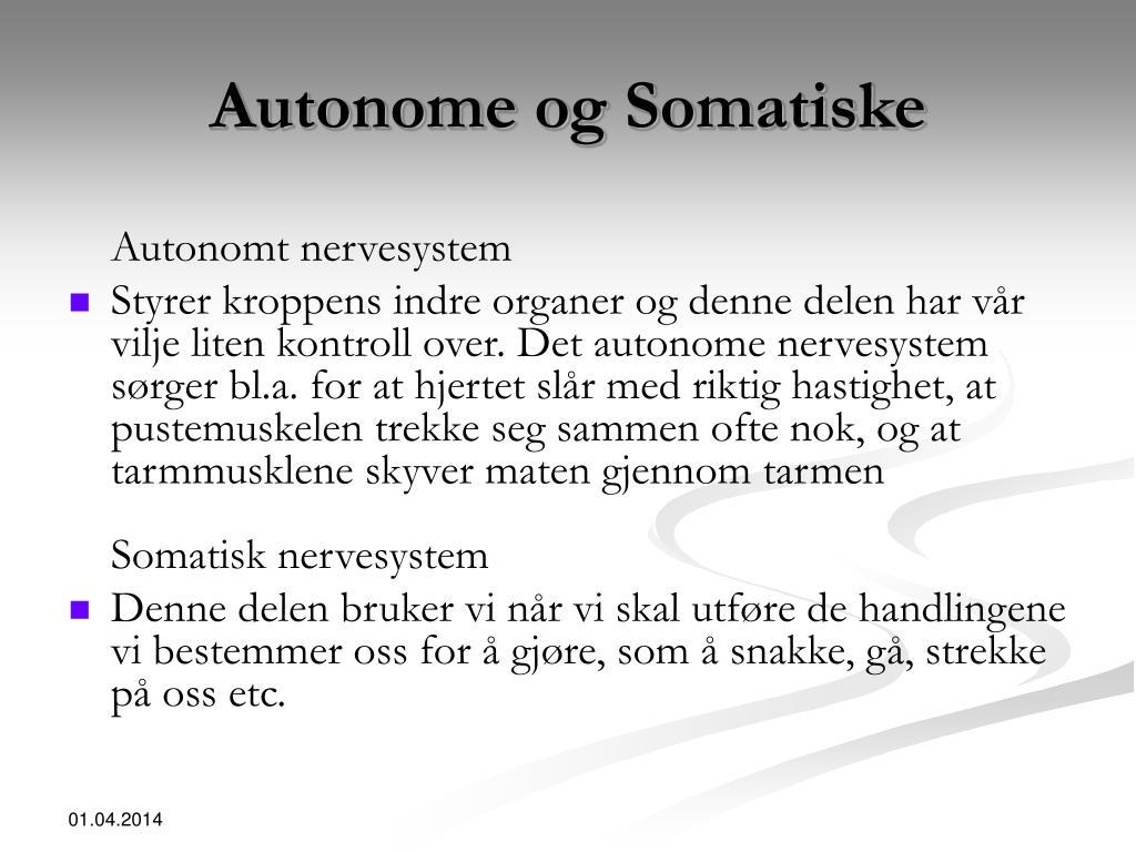 Autonome og Somatiske