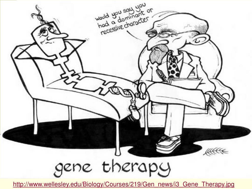 http://www.wellesley.edu/Biology/Courses/219/Gen_news/i3_Gene_Therapy.jpg