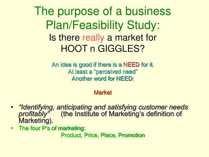 The purpose of a business Plan/Feasibility Study: