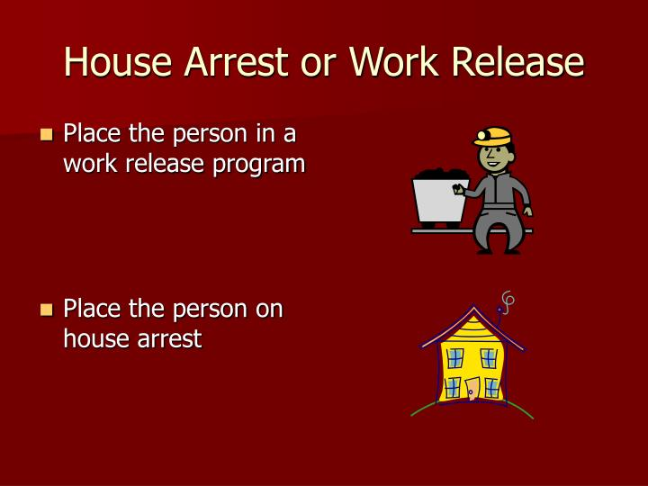 House Arrest or Work Release