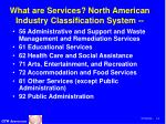 what are services north american industry classification system11
