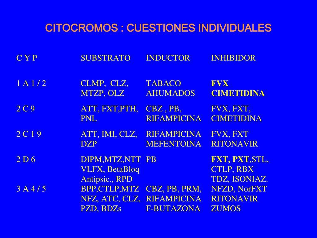 CITOCROMOS : CUESTIONES INDIVIDUALES