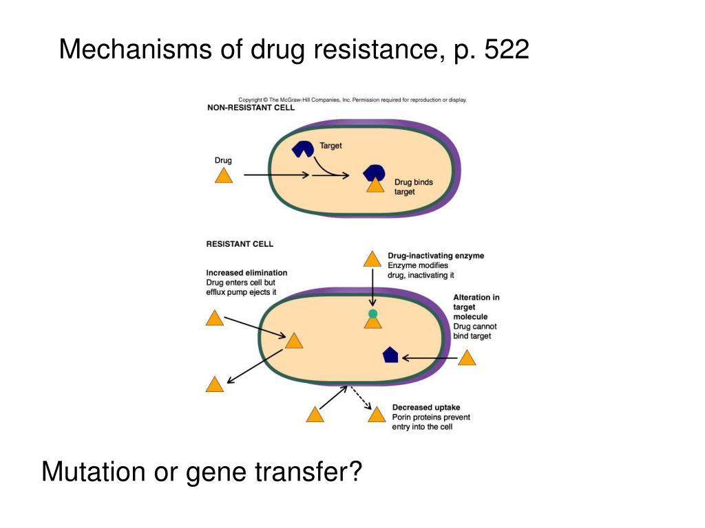Mechanisms of drug resistance, p. 522