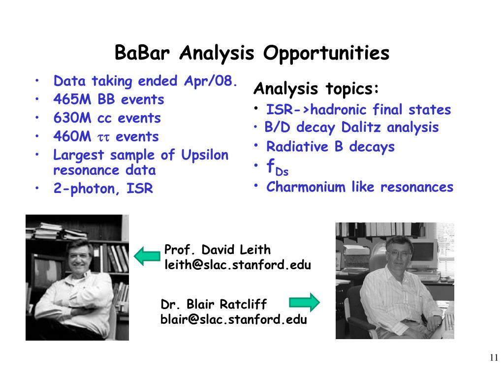 BaBar Analysis Opportunities