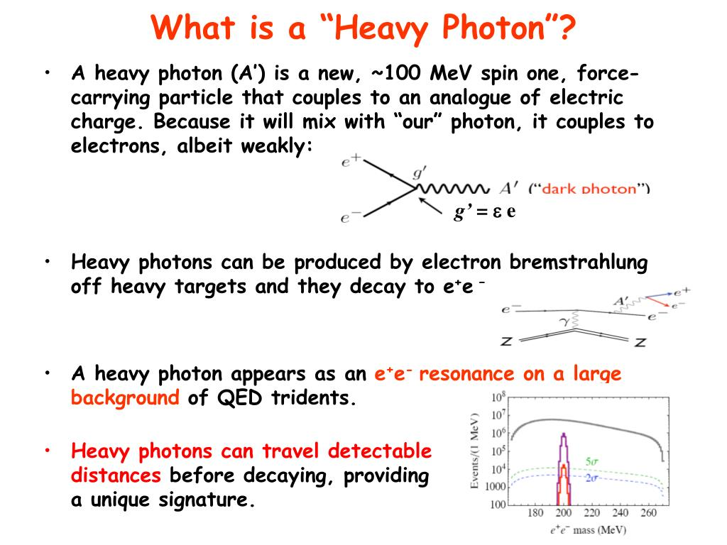 "What is a ""Heavy Photon""?"