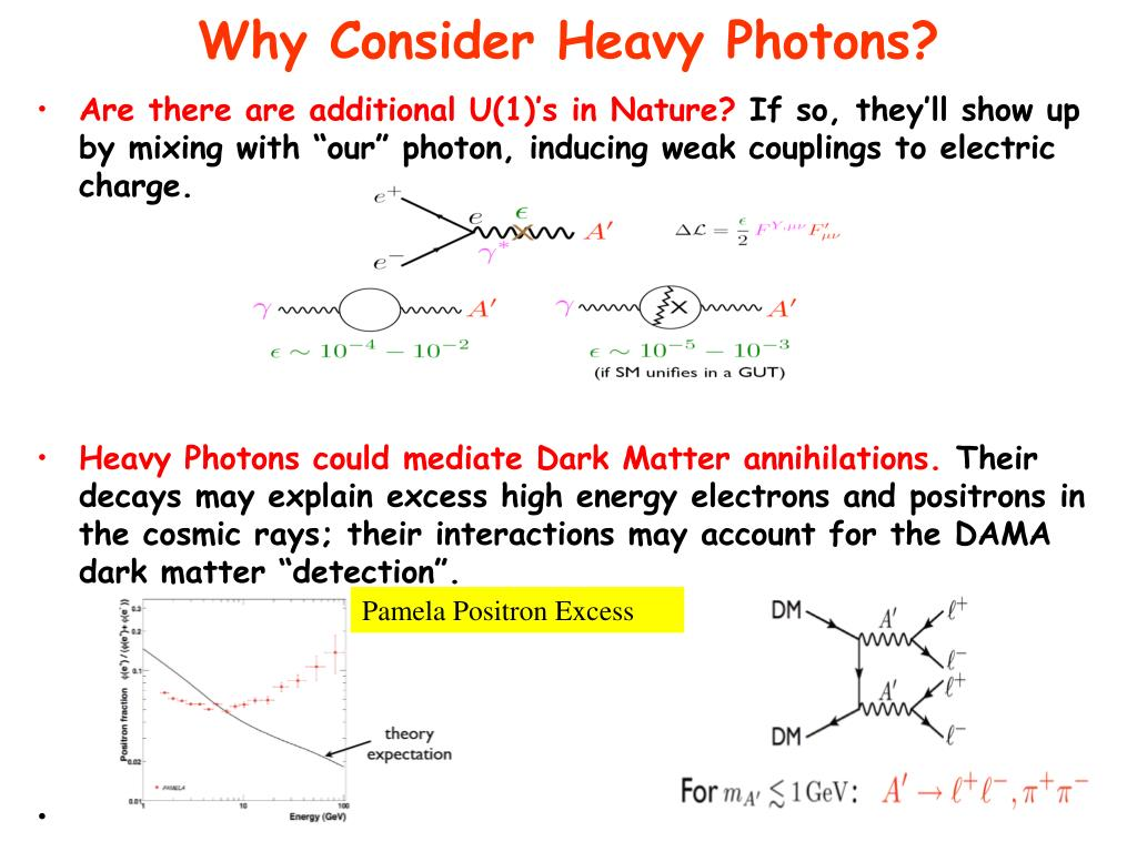 Why Consider Heavy Photons?