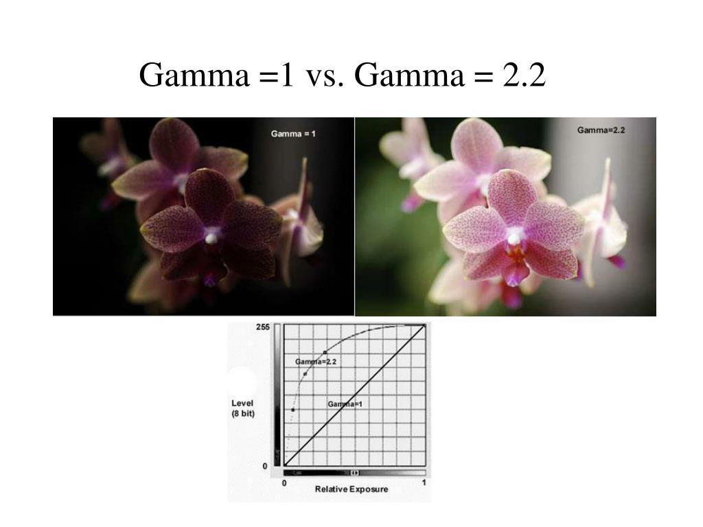 Gamma =1 vs. Gamma = 2.2