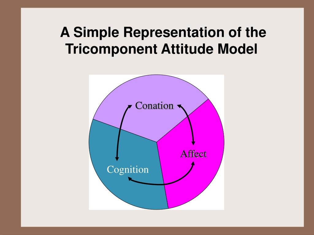 A Simple Representation of the Tricomponent Attitude Model