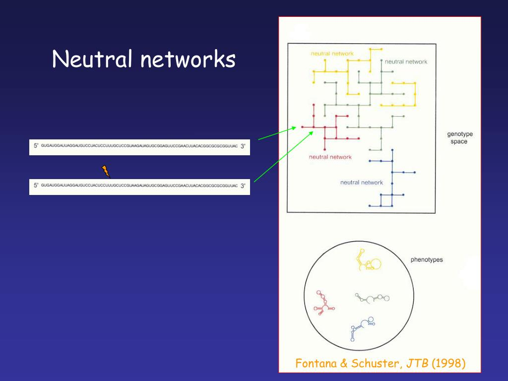 Neutral networks