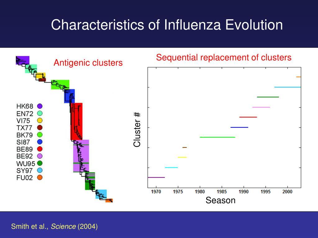 Antigenic clusters