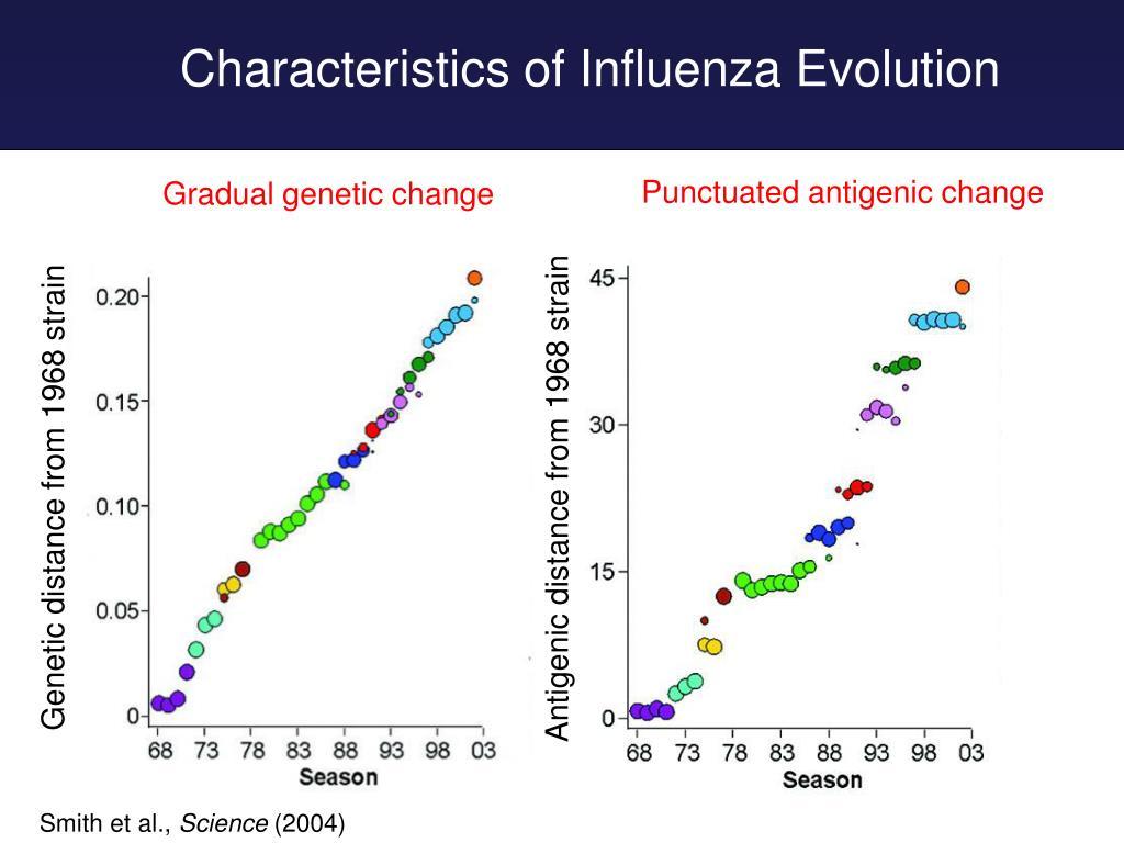 Punctuated antigenic change