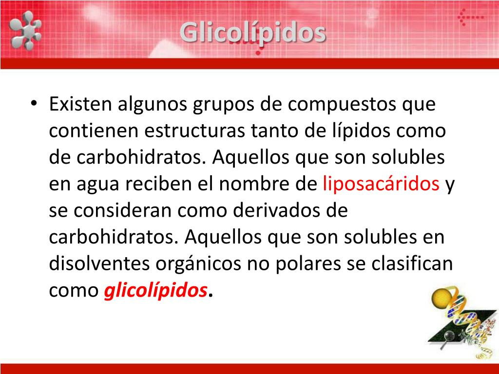 Glicolípidos