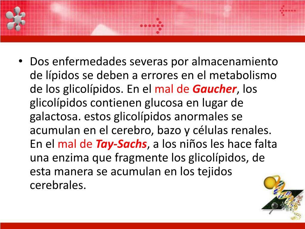 Dos enfermedades severas por almacenamiento de lípidos se deben a errores en el metabolismo de los