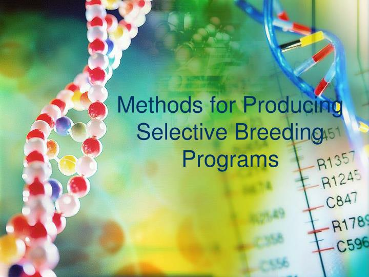 Methods for Producing Selective Breeding Programs