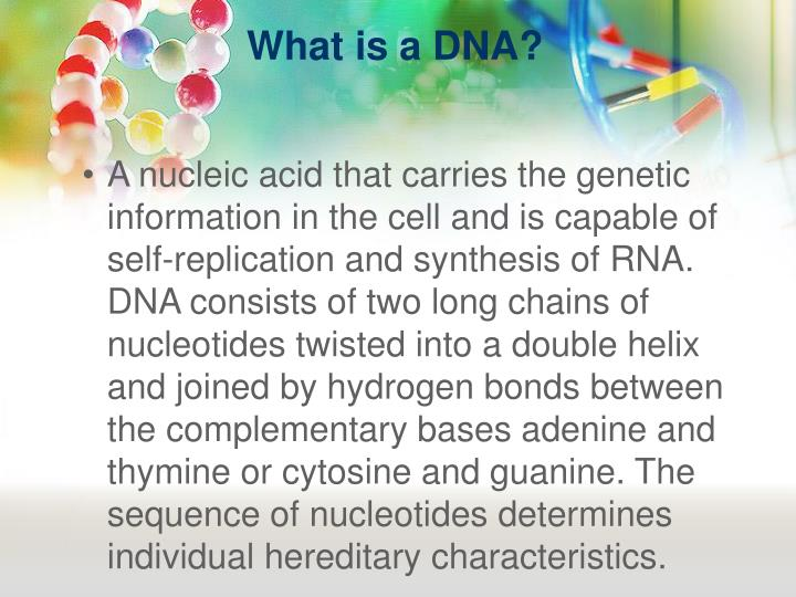 What is a dna