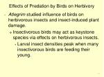 effects of predation by birds on herbivory