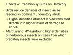 effects of predation by birds on herbivory20