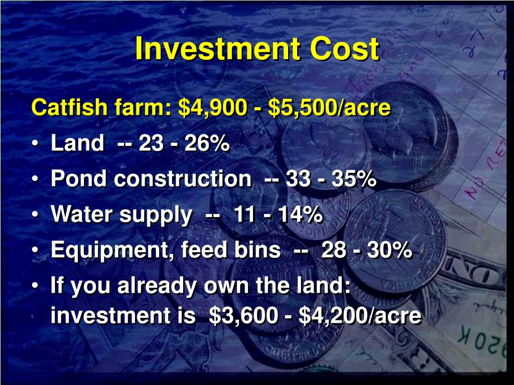 Investment Cost