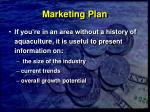 marketing plan26