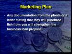 marketing plan30