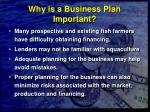 why is a business plan important