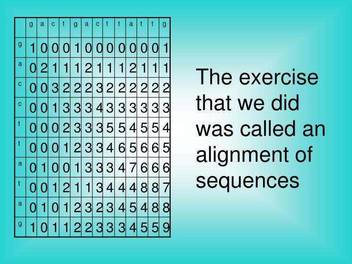 The exercise that we did was called an alignment of sequences